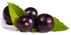image of acai berries which pure acai tablets are made from