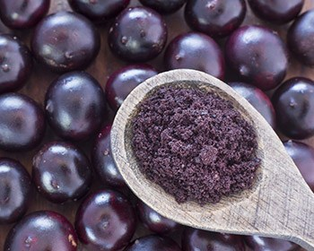 spoonfull of the acai berries powder weightworld on top of berries