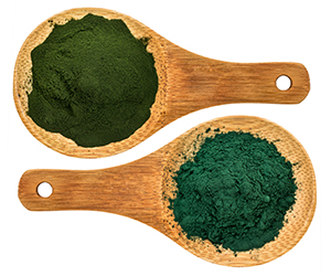 What Is The Difference Between Chlorella And Spirulina?