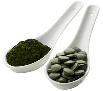 spoon full of bio chlorella algae powder and chlorella algae tablets