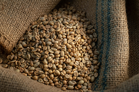 green coffee beans have Chlorogenic Acid which works to pacify the sugar in your body