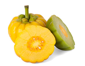Image Of Garcinia Cambogia Fruit to show it is an ingredient in raspberry ketone plus