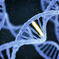 image of comuter genereted double helix structured genes