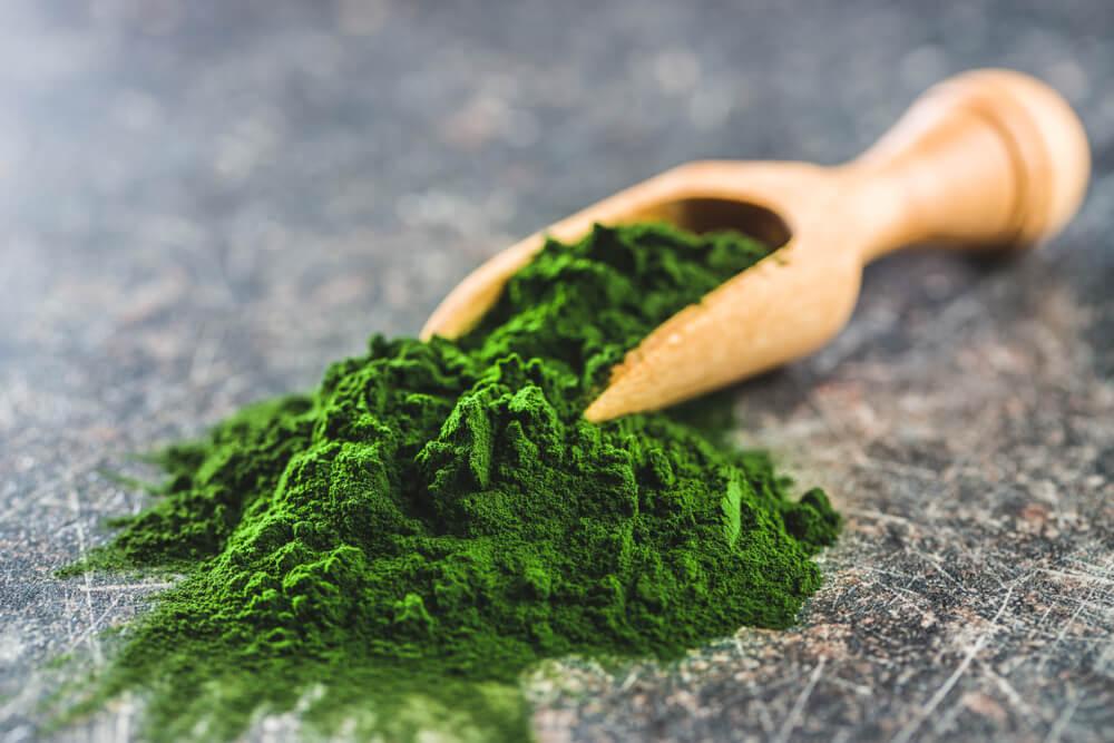 green-chlorella-powder-wooden-scoop