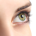 image of an eye to show that Moringa can protect against retinal damage