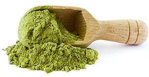 a spoonful of dried moringa leaf powder spilling out of spoon