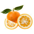 Oranges which may temporarily suppress your appetite and increase the number of calories burned