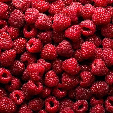 Everything about Superfoods and why you need to add them to your diet