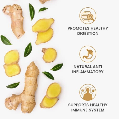 /images/product/package/ginger-uk-5.jpg