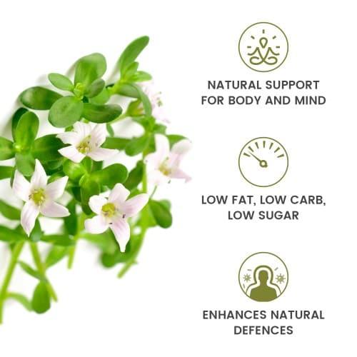 /images/product/package/super-brahmi-leaves-powder-5-uk-new.jpg