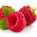 image of raspberries to represent raspberry ketones