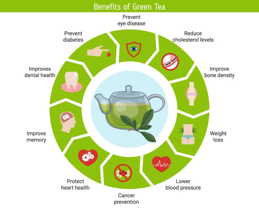 inforgraphic showing the ten benefits of drinking green tea
