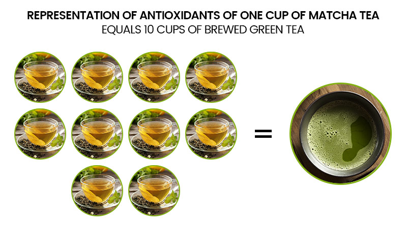 infographic showing how one cup of matcha tea equals 10 cups of brewed green tea