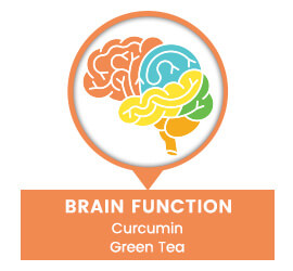 brain function curcumin green tea