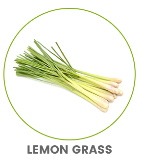 image of a bunch of lemon grass roots to show colon cleanse